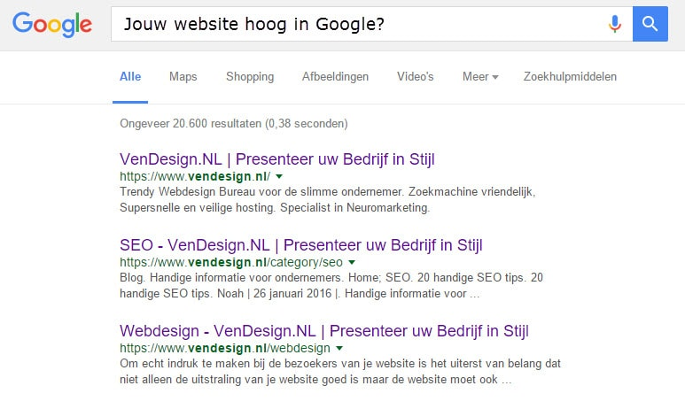 website hoog in google