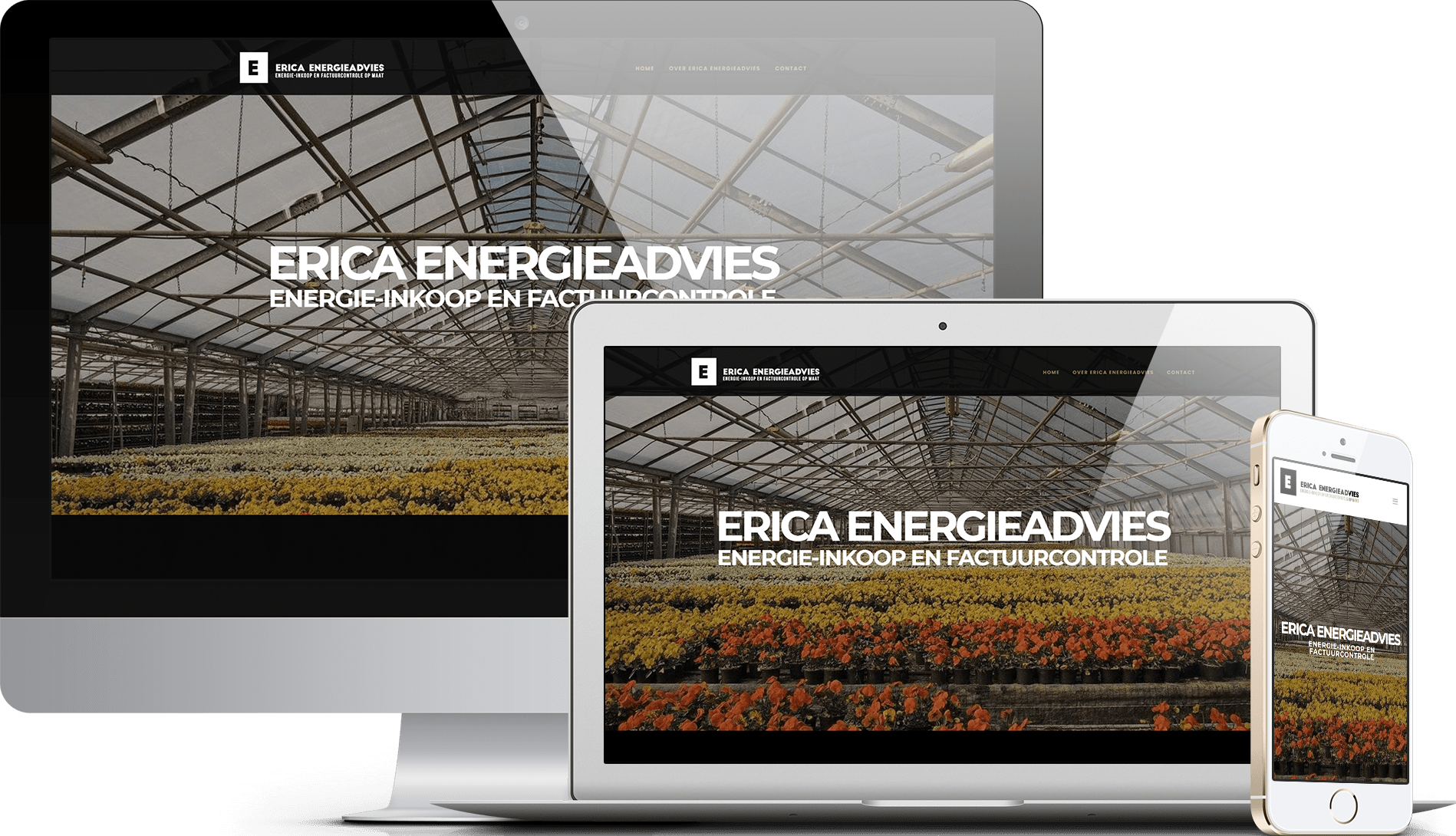 Website erica-energie.nl